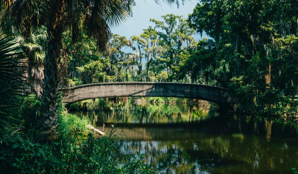 A park in New Orleans which has a beautiful and lush greenery