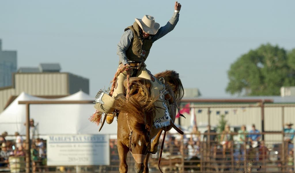 Cowboy with white hate riding a brown horse at a rodeo