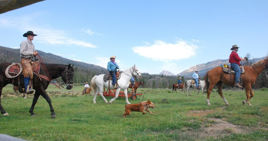People working on a ranch in Wyoming, with horses and dogs