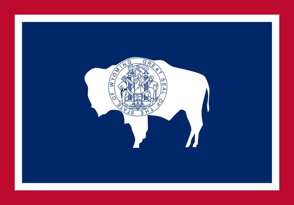 The seal of the state- A Bison, red, blue & white